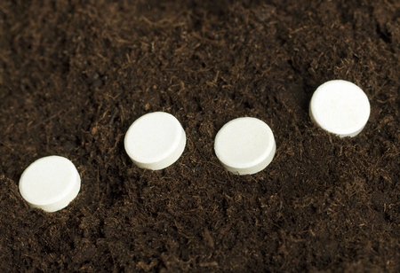 White tablets in brown soil. photo