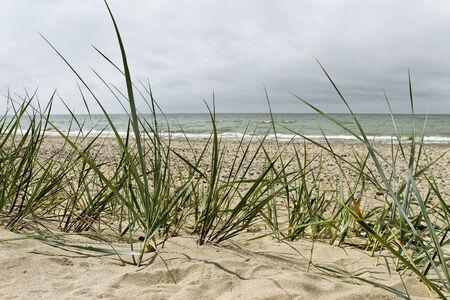 At the Baltic sea coastline. Stock fotó