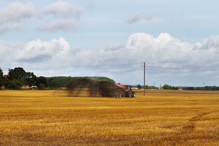 manure: Tractor with liquid manure on the field.