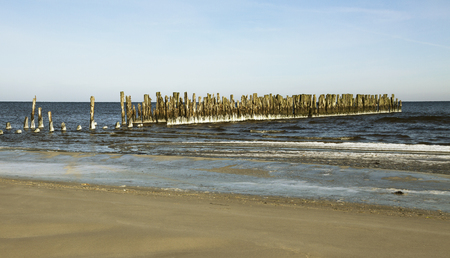 Remnants of the old wooden pier. photo