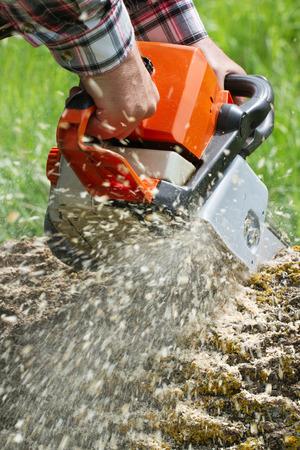 tree removal service: Man cuts a fallen tree, dangerous work.