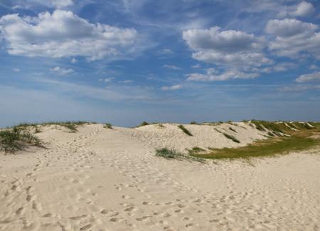 dune: Dune at the Baltic sea.