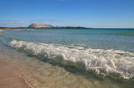 cinta: View to the beach of La Cinta, Italy.