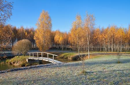 naranja arbol: Paisaje del país con pequeño puente en una estación del otoño.