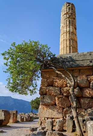 delfi: Ruins of temple Apollo in the archaeological site of Delphi in Greece.