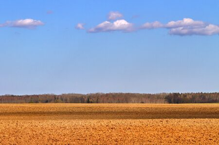 cultivated land: Cultivated land in a sunny day. Stock Photo