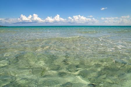 cinta: On the beach of La Cinta.