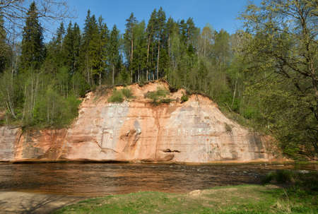 gauja: Sandstone cliffs by the river Gauja, national park in Latvia.