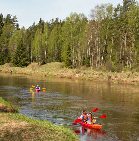 gauja: LIGATNE, LATVIA - MAY 8: Gauja is the only large river of Latvia. On the river of Gauja in a canoe descent on 8 May, 2016, Latvia.