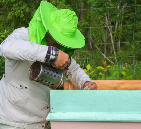 Work of beekeeper outside in a summer. Stock Photo