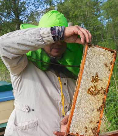 Work of beekeeper outside in a summer. photo
