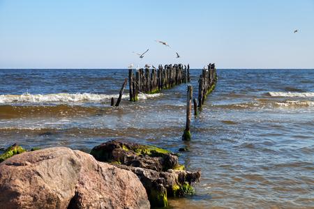 Mole with birds on Baltic sea.
