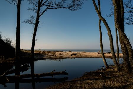 Natural landscape of small river flowing to the Baltic sea.
