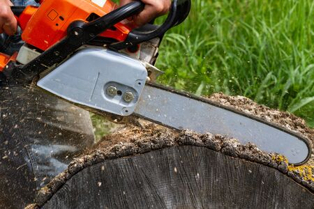 Man working by professional chain saw. Stock Photo