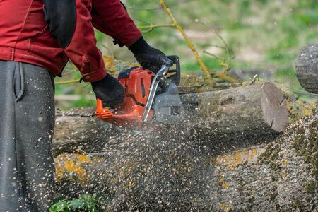 Man works by chainsaw in forest.