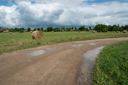 View to country road with puddle in countryside.