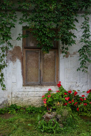 View to close window with flowers.