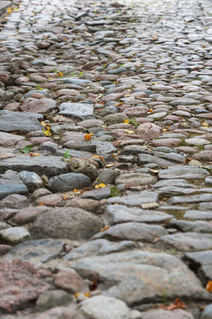 View to old cobbled road in an autumn.