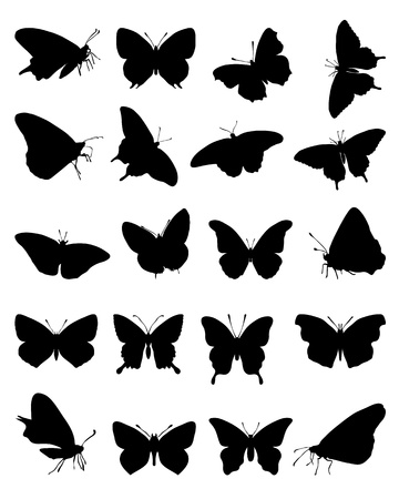 Black silhouettes of butterflies on a white    Stock Vector - 21908312