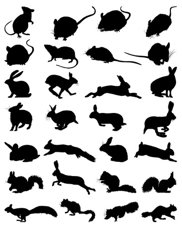 Black silhouettes of rodents, vector illustration Vettoriali