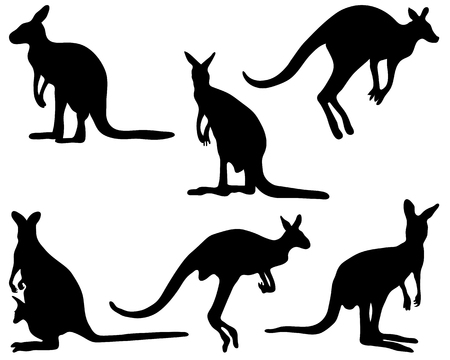 wallaby: Black silhouettes of kangaroo, vector illustration