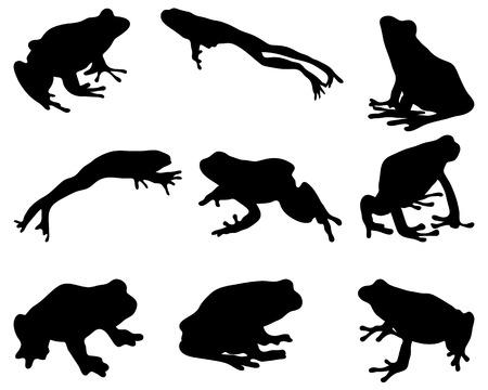 rana venenosa: Siluetas negras de la rana, vector Vectores