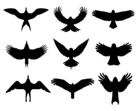 Black silhouettes of  birds in flight, vector isolated Vector