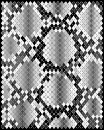 snake skin pattern: Illustration of gray skin of snake  Illustration