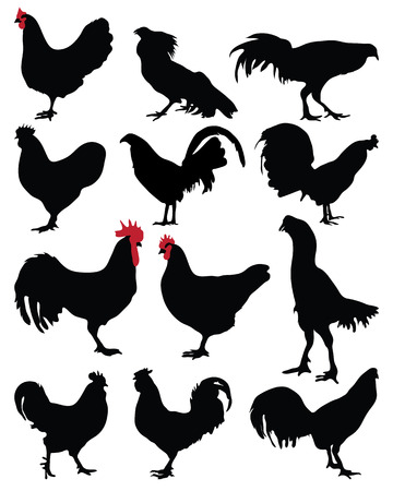 Black silhouette of a roosters and hens, vector Vettoriali