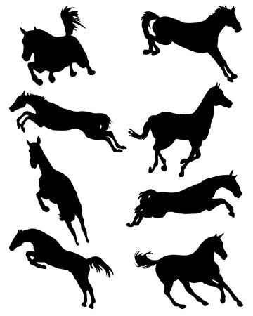 cavallo che salta: Sagome nere di cavalli in salto, vettore