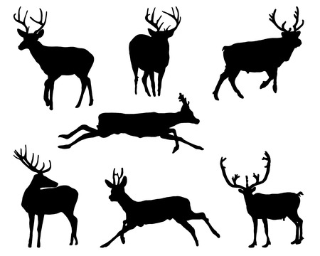 mating: Black silhouettes of deers, vector