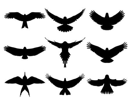 Black silhouettes of birds in flight, vector Vector