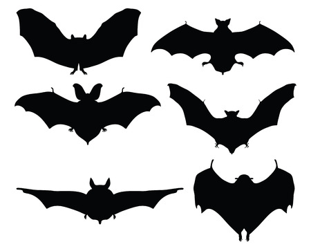 nocturnal: Black silhouettes of bats on a white background, vector