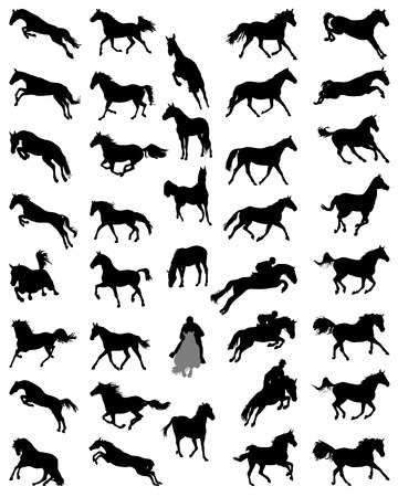galloping: Black silhouettes of horses