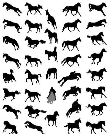 Sagome nere di cavalli Archivio Fotografico - 30458433
