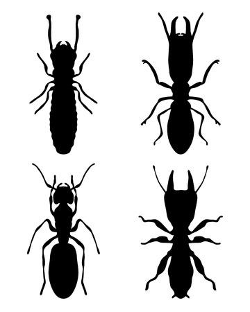 Black silhouettes of termites Vector