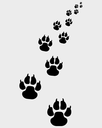 Black footprints of dogs, turn right-vector illustration