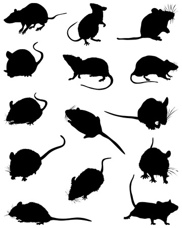 Different black silhouettes of mouses,vector