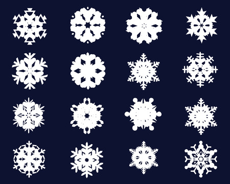 Collection of different snowflakes icon 2