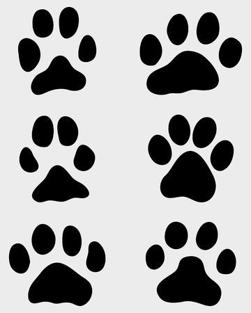 huellas de perro: Impresión en negro de la pata de los perros y gatos, vector