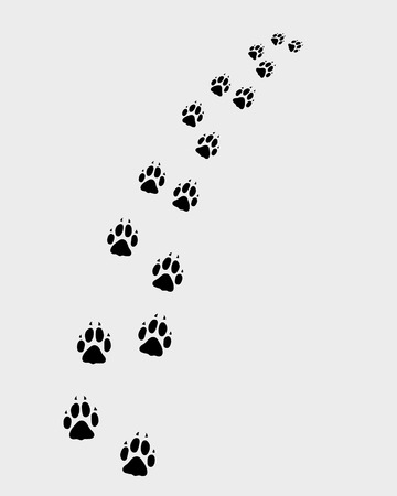 dog track: Footprints of dog, turn right, vector