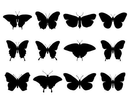 Black silhouettes of different butterflies, vector illustration  イラスト・ベクター素材