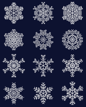 Set of different white snowflakes, vector illustration