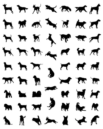 husky puppy: Black silhouettes of different races of dogs, vector