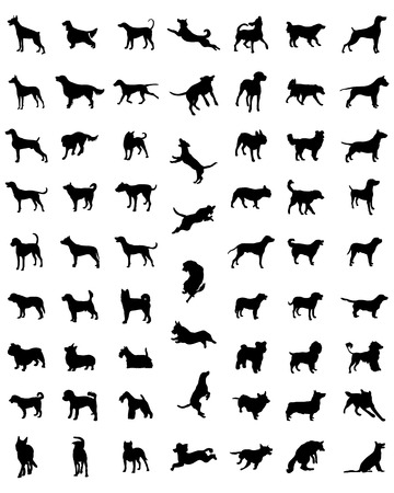labrador: Black silhouettes of different races of dogs, vector