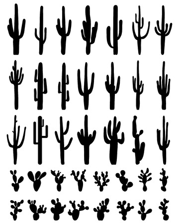 Black silhouettes of different cactus on a white background, vector