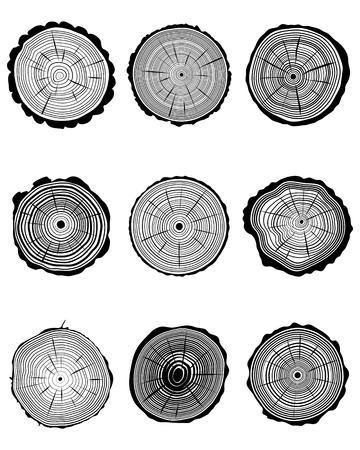 tree stump: Set of cross section of trunks, vector illustration