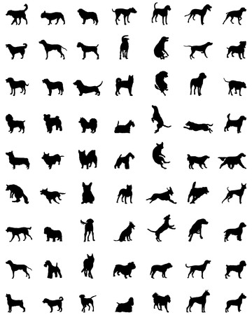 Black silhouettes of different races of dogs 일러스트