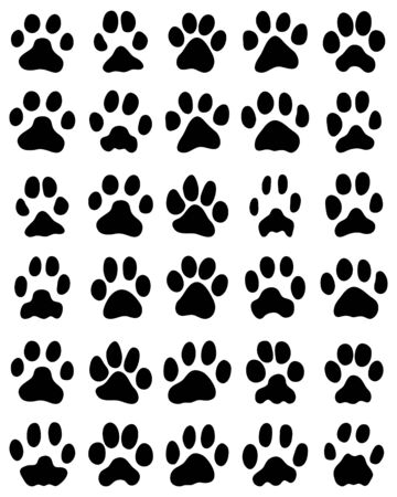 Black print of cats paws on white background, vector Vettoriali