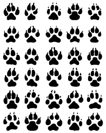 Black print of paw of dogs, vector illustration